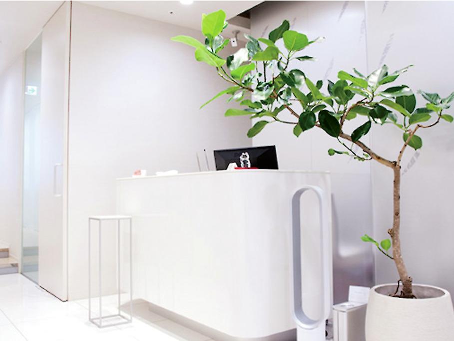 東京都の銀座矯正歯科の写真4