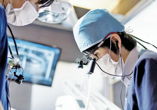 大阪府の(1)城彩会歯科ガーデンクリニックまたは(2)城彩会歯科の写真3